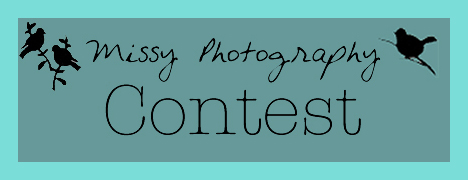 Classic Bride Photography Contest