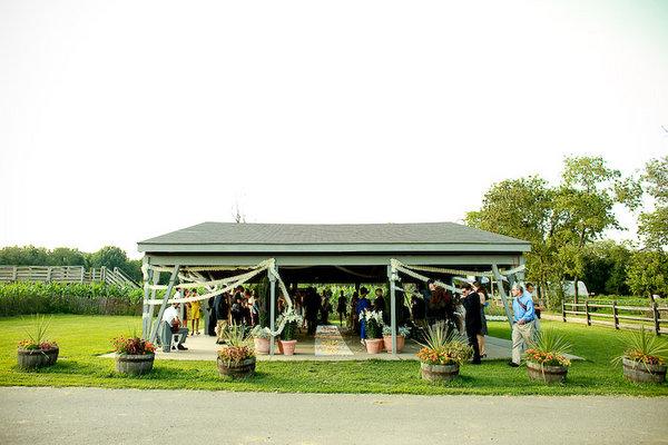 Budget Garden Wedding