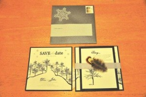 BSBCompleted 300x199 in DIY Budget Savvy Save The Dates and diy projects blog
