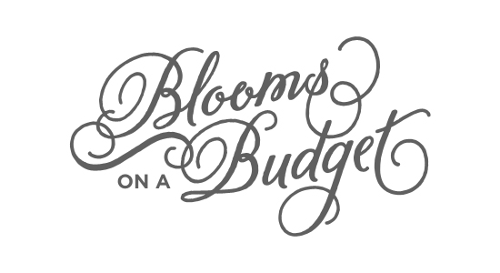 Blooms on a Budget Logo