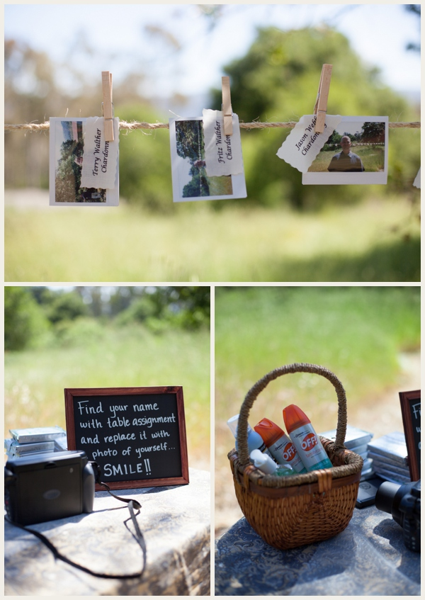 picnic-wedding_0004