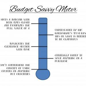budget savvy meter