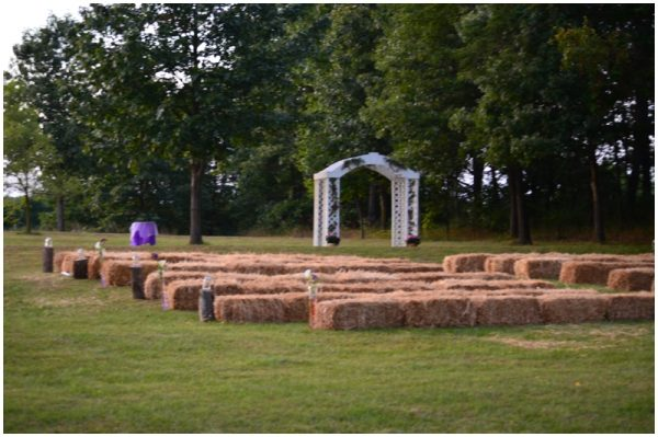 purple backyard wedding_0001