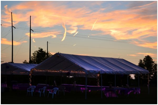 purple backyard wedding_0016