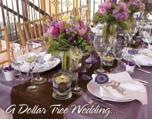 a_dollar_tree_wedding