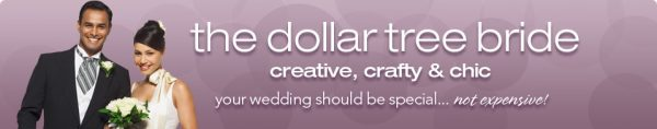 the_dollar_tree_bride