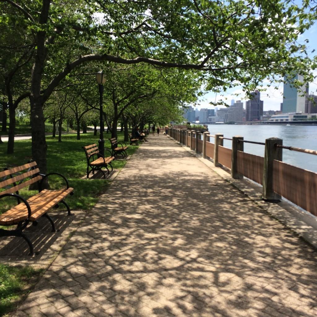 Picnic in the Park on Roosevelt Island