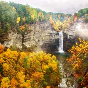 Ithaca in the fall (Credit: http://focus.tracinglight.com/photos/263/Fall_Colors_at_Taughannock_Falls___Finger_Lakes_Region__Ulysses__NY/)