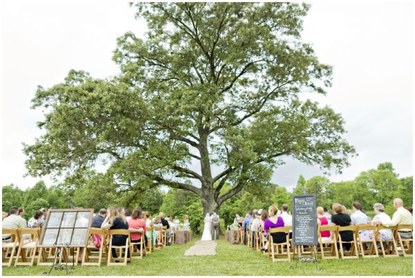 gorgeous wedding location under a tree