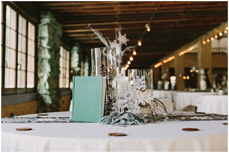 Magical diy winter wedding the budget savvy bride james stokes winter wedding decor inspiration solutioingenieria