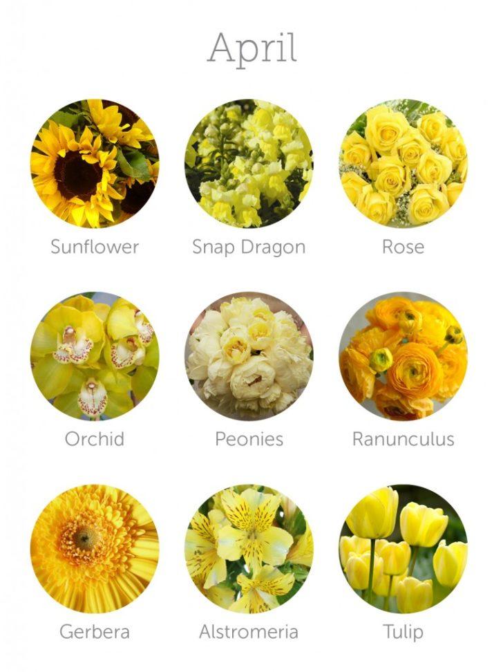 wedding flowers in season in April | in-season flowers for April