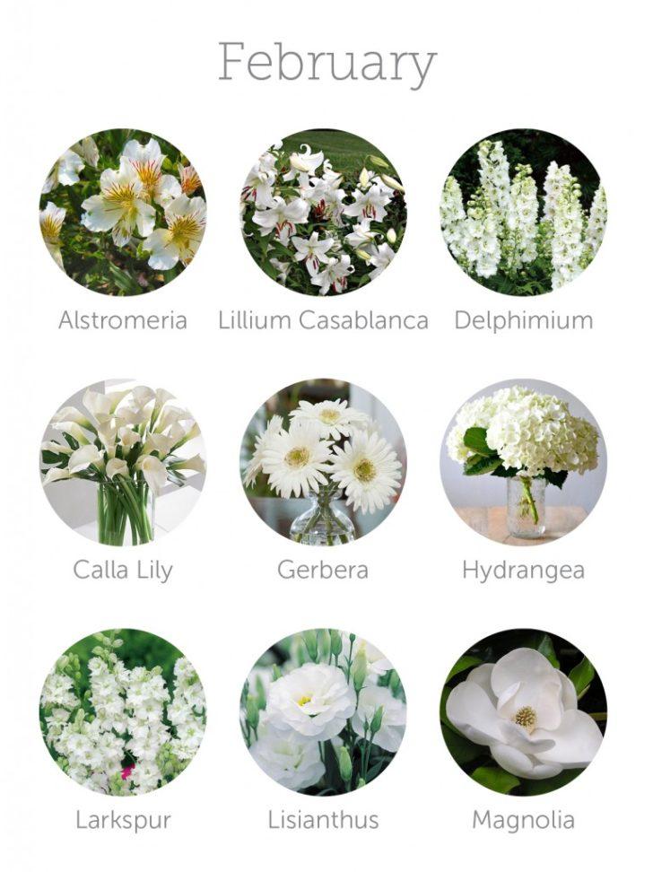 wedding flowers in season in February | in-season flowers for February