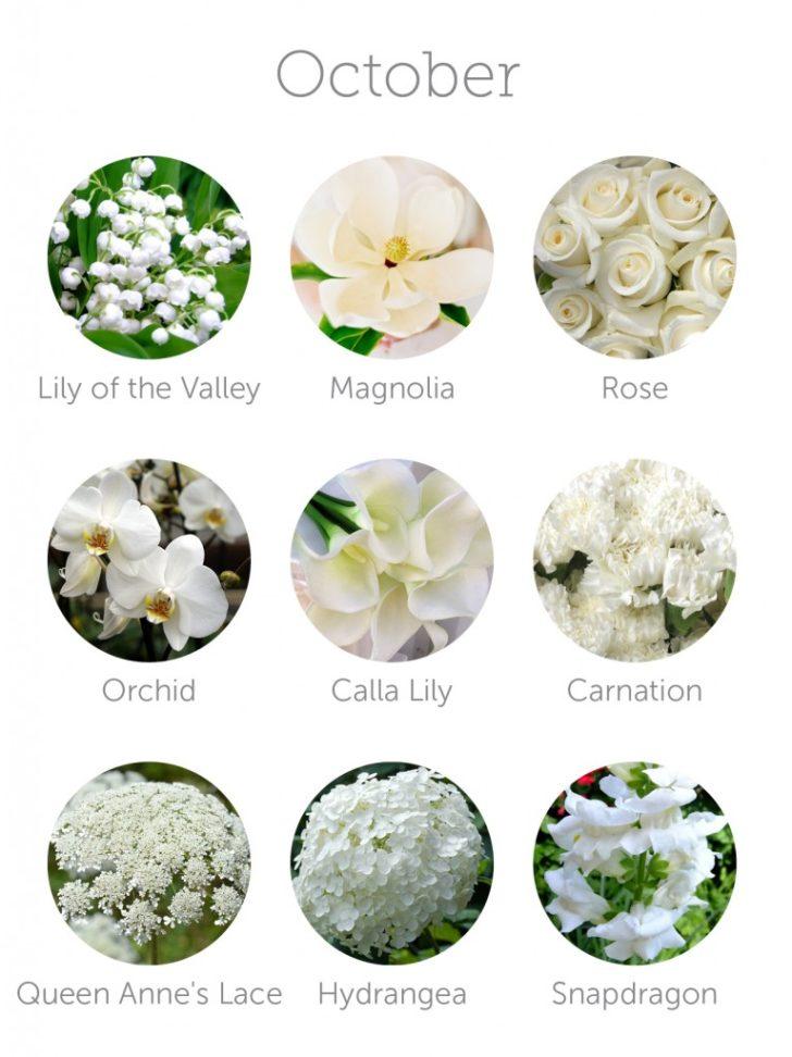 wedding flowers in season in October | in-season flowers for October