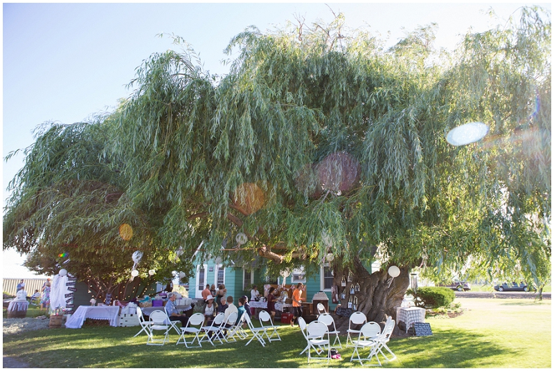 weeping willows at the reception