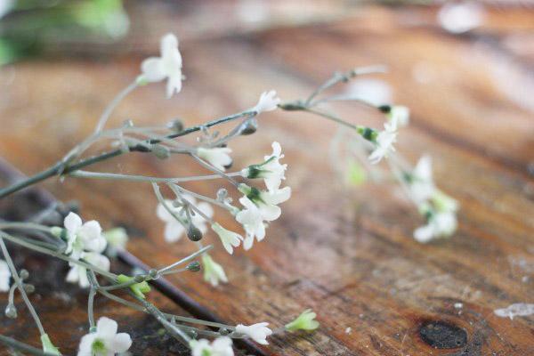 wedding-floral-arrangement-ab