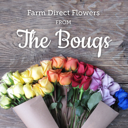farm direct flowers from the bouqs