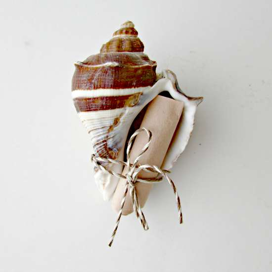 asking your bridesmaids - seashell project