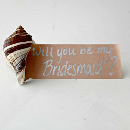 will you be my bridesmaid? seashell project