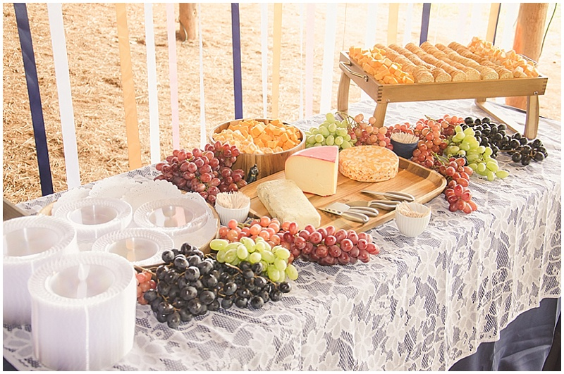 wedding cheese appetizers