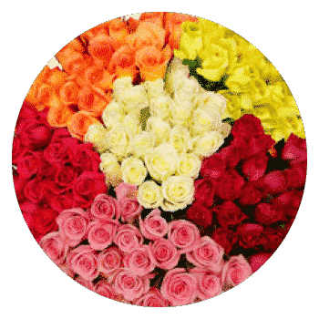 costco- bulk flowers for weddings