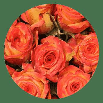 samsclub- bulk flowers for weddings