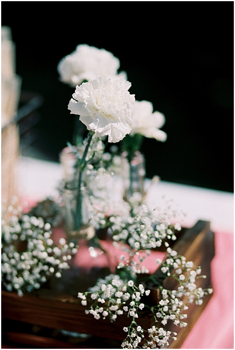 carnation centerpieces