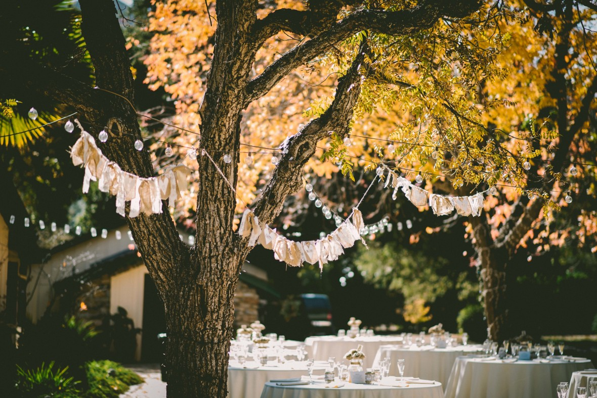 tips for making a backyard wedding magical the budget savvy bride