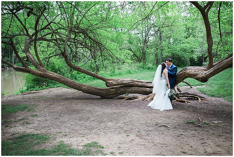 bride and groom tree wedding photos