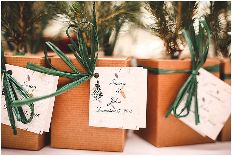 sapling wedding favors