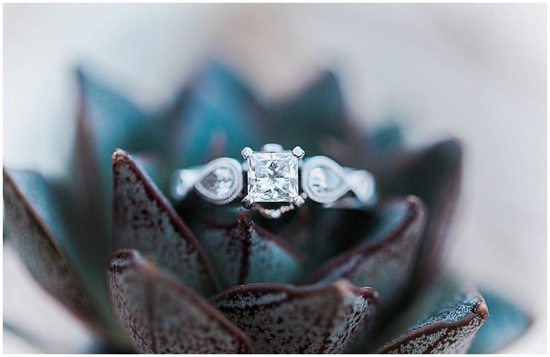 succulent ring photos