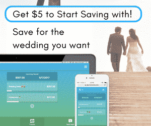 Rize Money -- Save up for your wedding day with this simple FREE app!