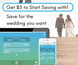 Rize Money - Reach Your Savings Goals