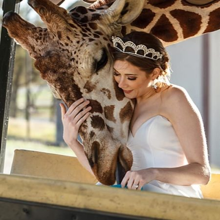safari inspired wedding