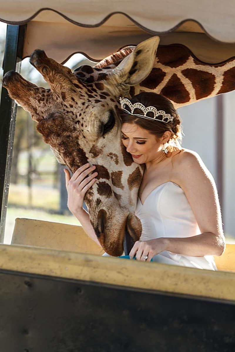 safari inspired wedding
