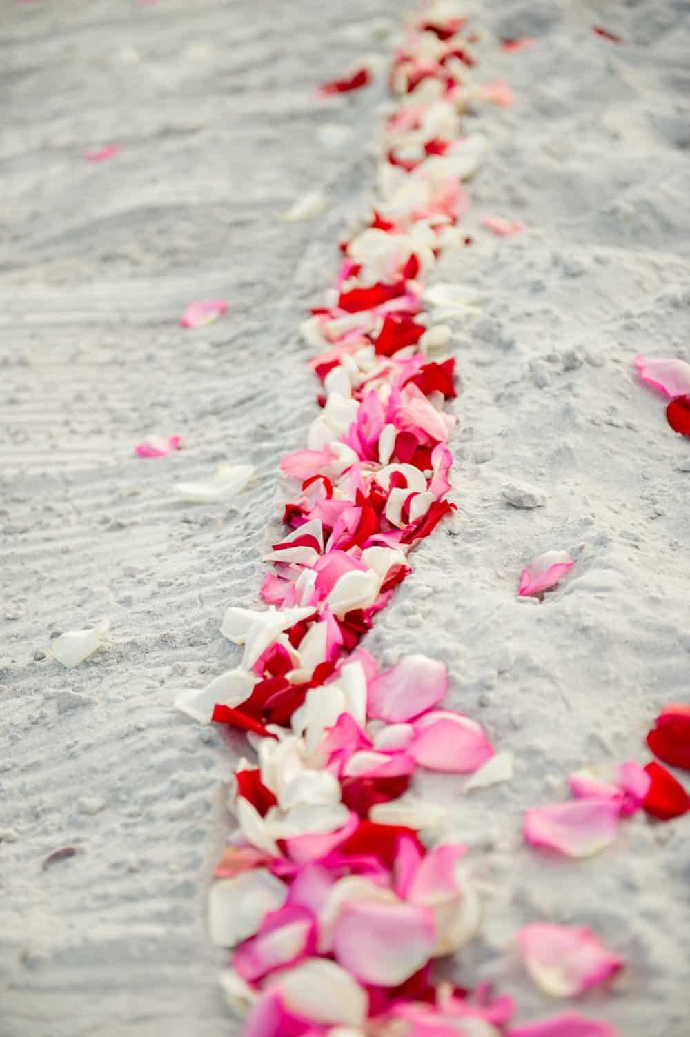 Florida Destination Wedding on the Beach | The Budget Savvy Bride