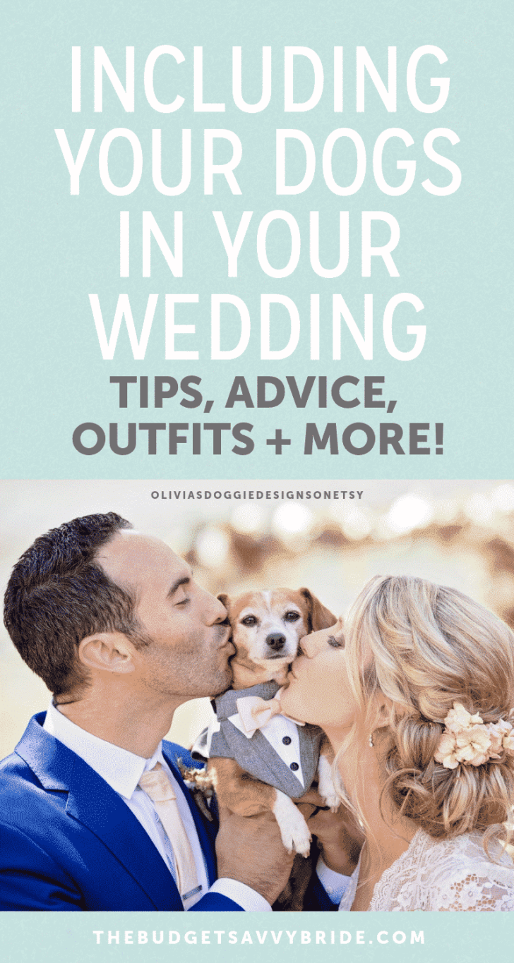 including your dogs in your wedding