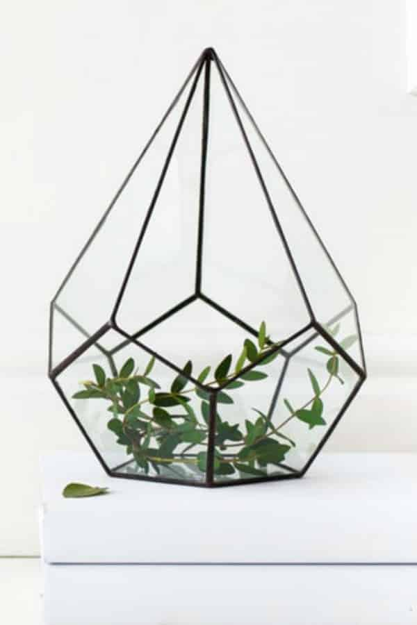Glass Geometric Terrarium