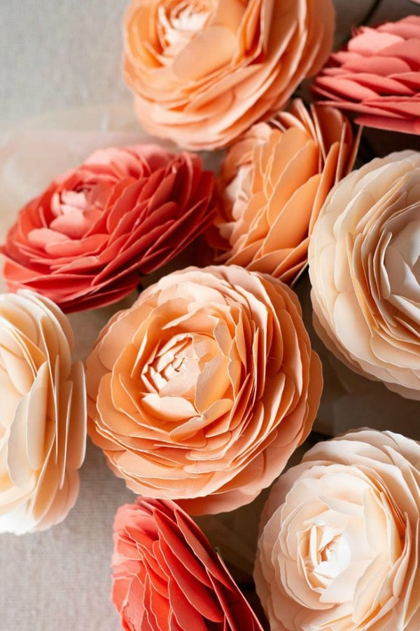 Paper Ranunculus Template By FarrenCeleste