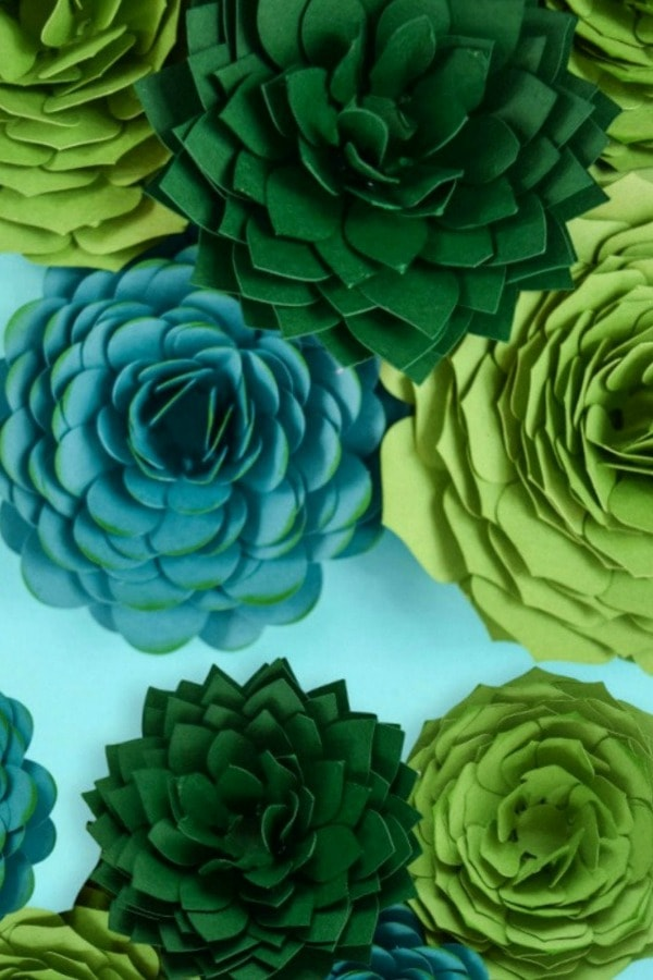 Succulent Paper Flower Templates By CatchingColorFlies