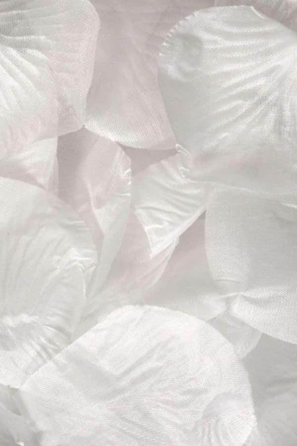 White fabric rose petals  Dollar Tree Wedding Decor finds
